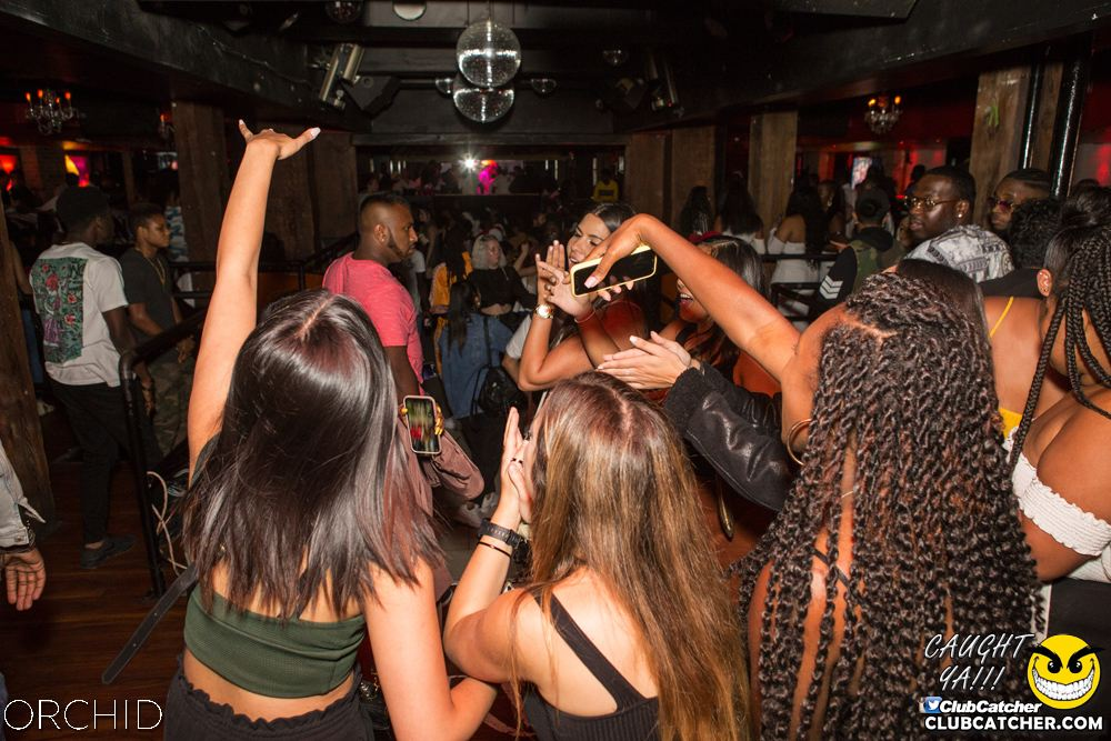 Orchid nightclub photo 59 - August 31st, 2019