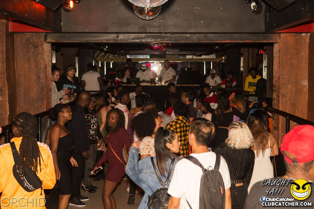 Orchid nightclub photo 68 - August 31st, 2019