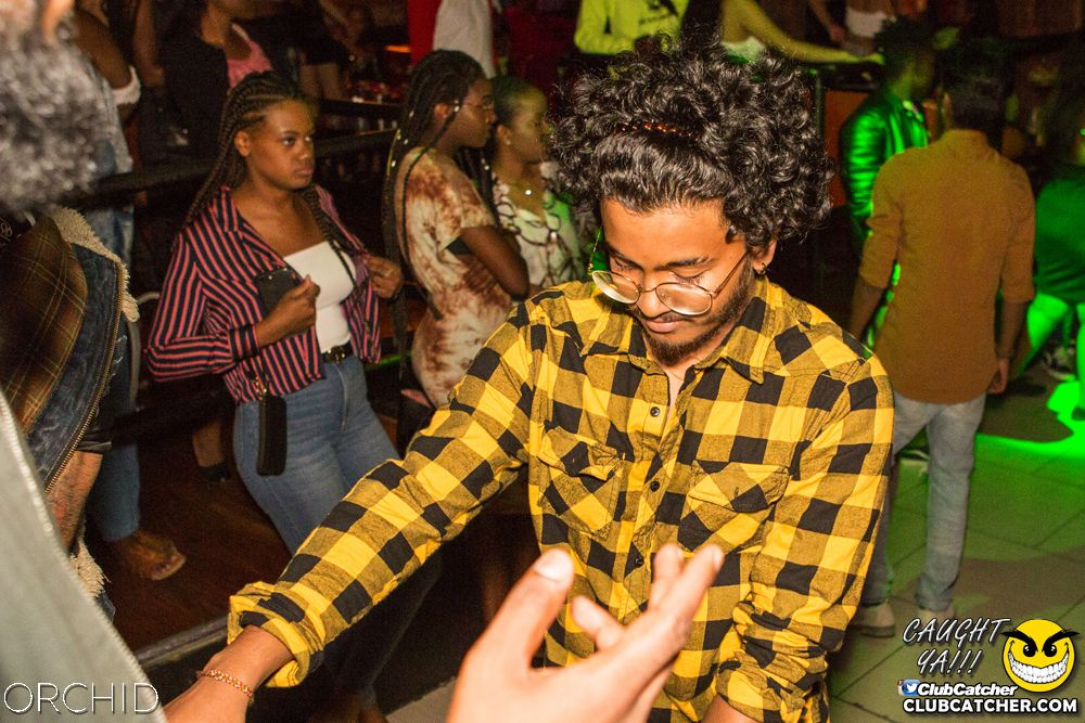 Orchid nightclub photo 73 - August 31st, 2019