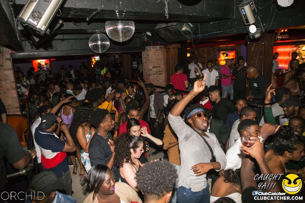 Orchid nightclub photo 77 - August 31st, 2019