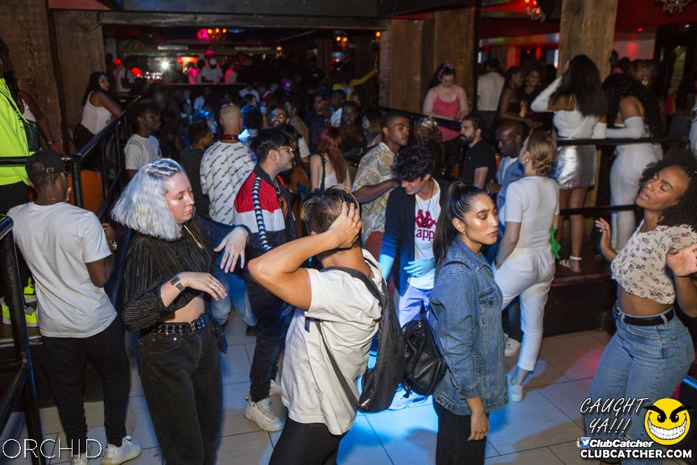 Orchid nightclub photo 82 - August 31st, 2019