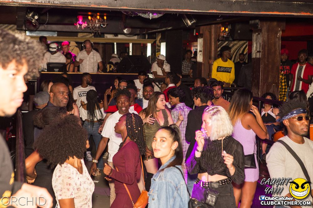 Orchid nightclub photo 98 - August 31st, 2019