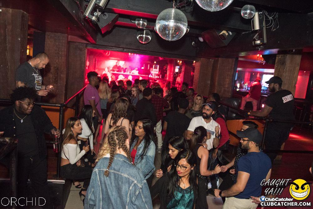Orchid nightclub photo 20 - September 6th, 2019