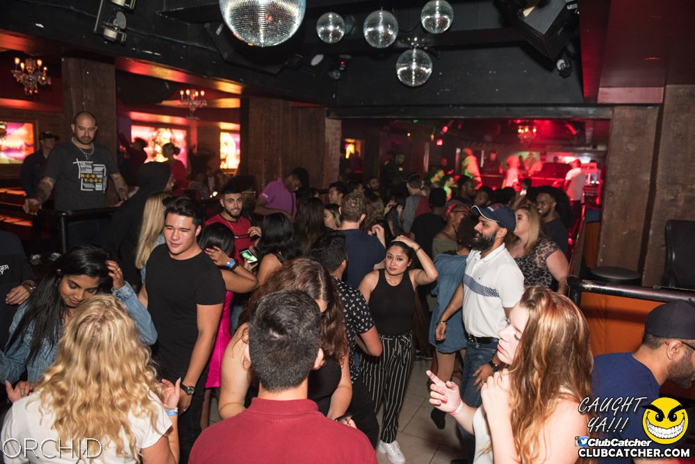 Orchid nightclub photo 41 - September 6th, 2019