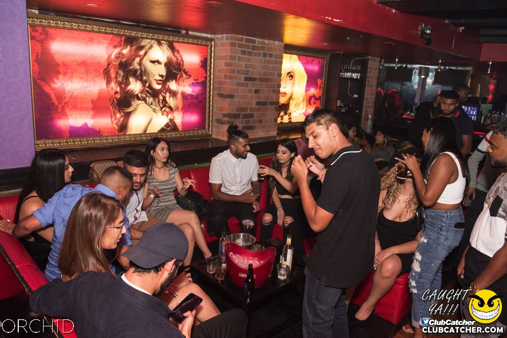 Orchid nightclub photo 47 - September 6th, 2019