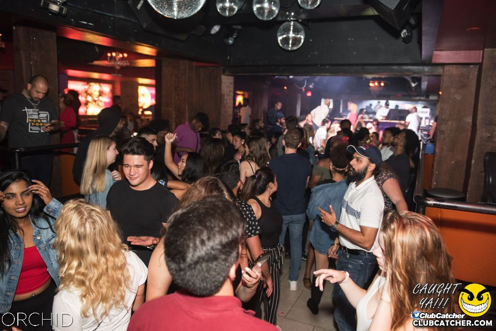Orchid nightclub photo 59 - September 6th, 2019