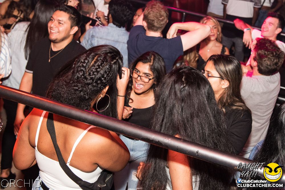 Orchid nightclub photo 63 - September 6th, 2019