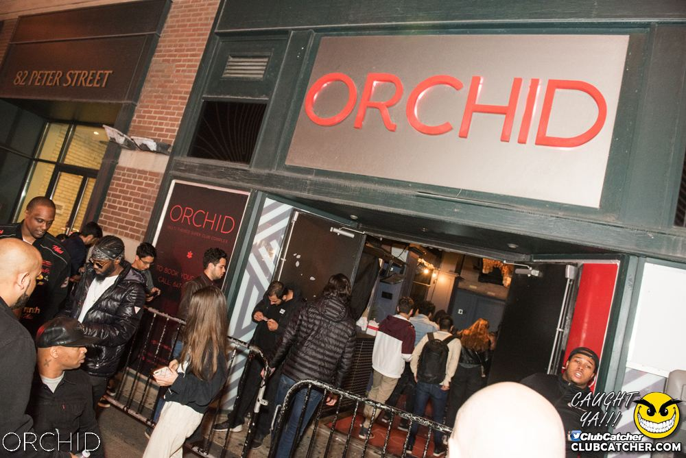 Orchid nightclub photo 65 - September 6th, 2019