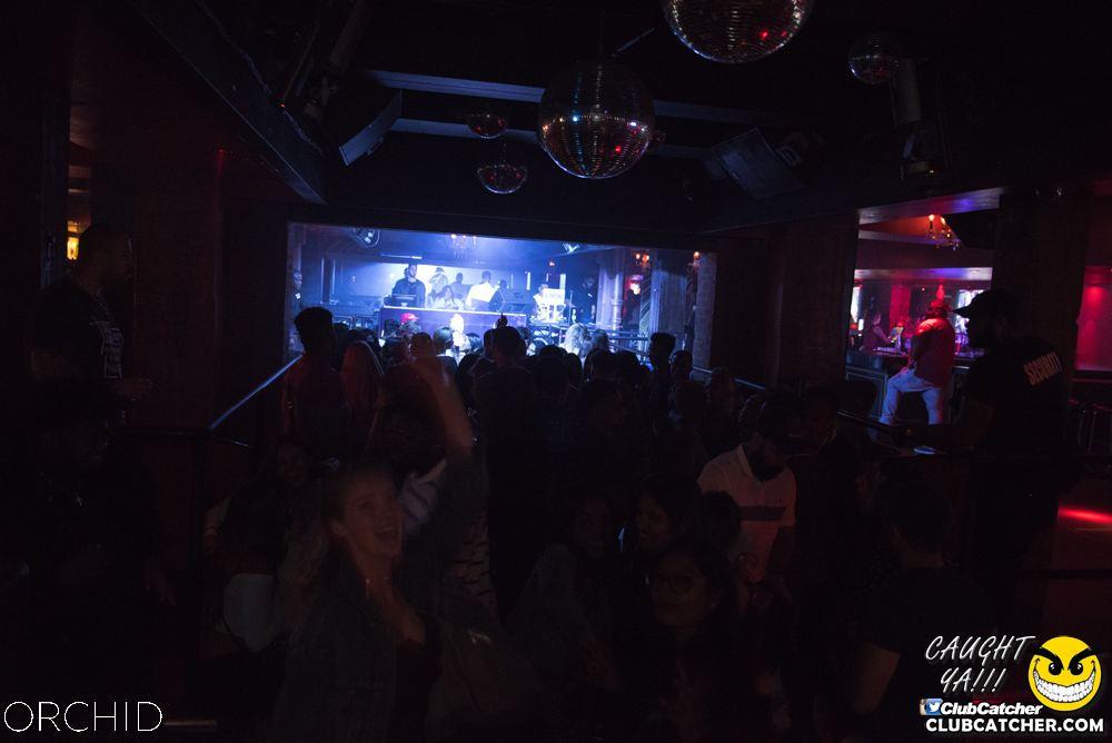 Orchid nightclub photo 71 - September 6th, 2019