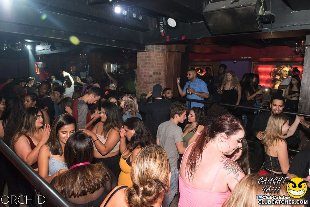 Orchid nightclub photo 89 - September 6th, 2019