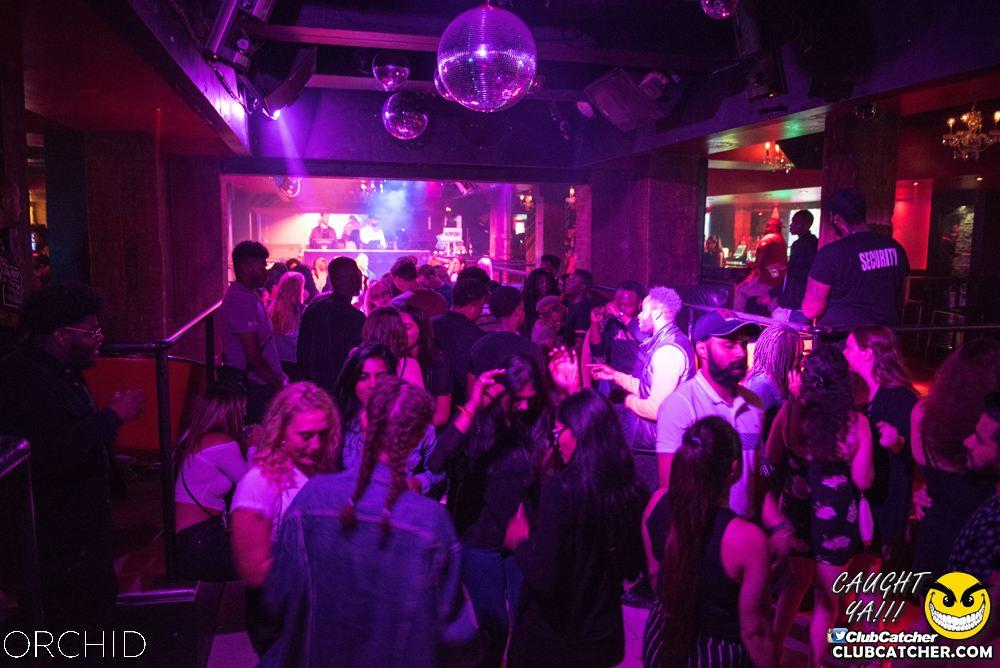 Orchid nightclub photo 95 - September 6th, 2019