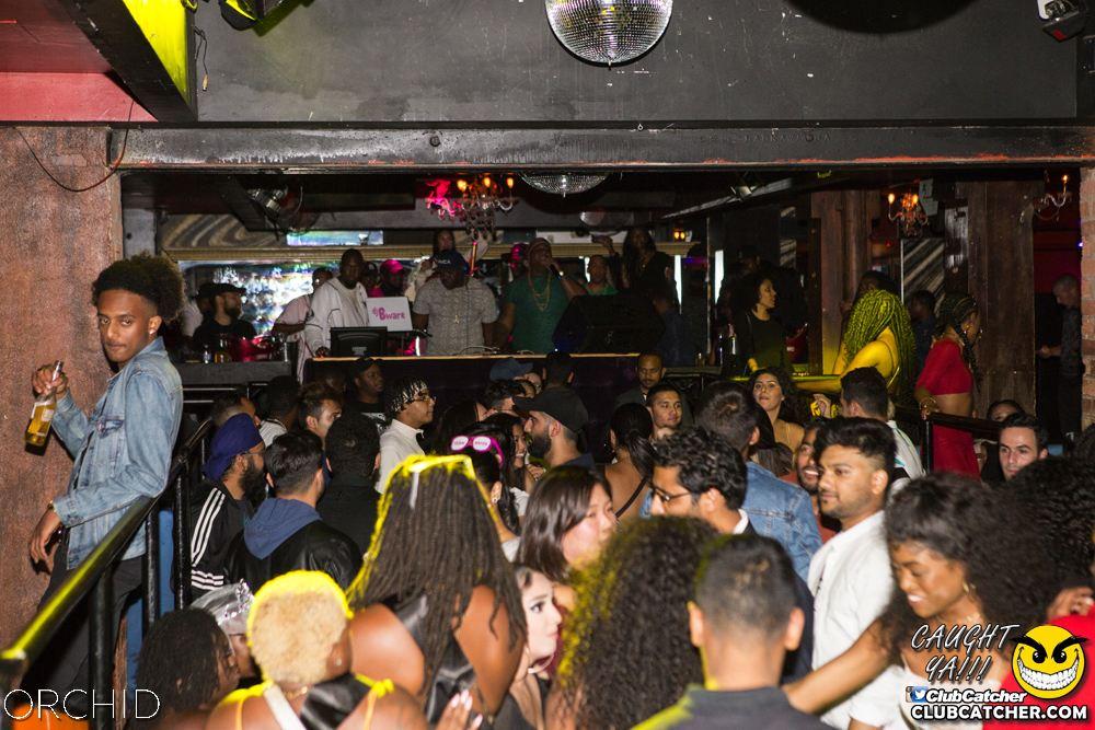 Orchid nightclub photo 1 - September 7th, 2019