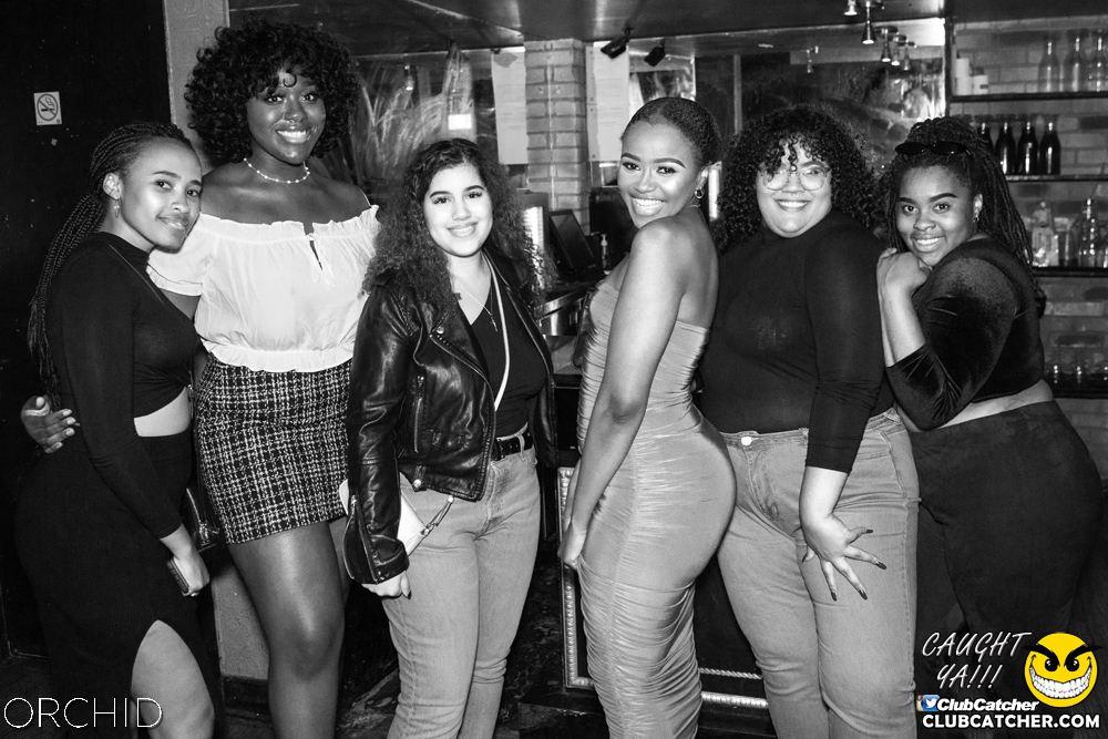 Orchid nightclub photo 111 - September 7th, 2019