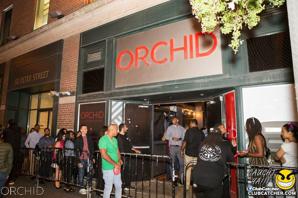 Orchid nightclub photo 14 - September 7th, 2019