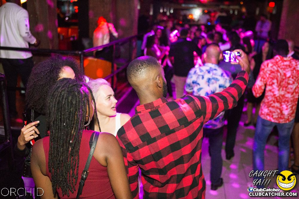 Orchid nightclub photo 16 - September 7th, 2019