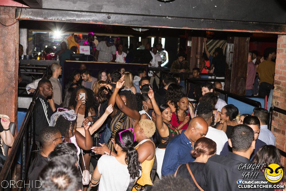 Orchid nightclub photo 17 - September 7th, 2019