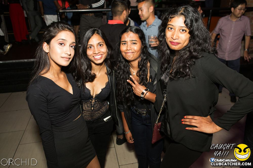 Orchid nightclub photo 36 - September 7th, 2019