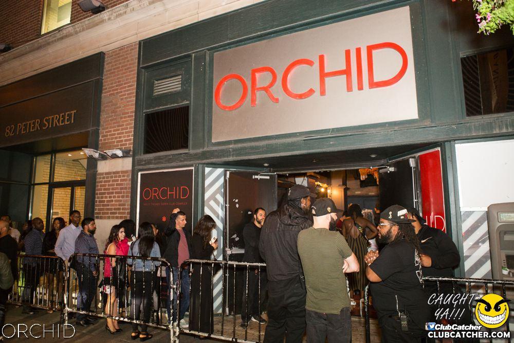 Orchid nightclub photo 37 - September 7th, 2019