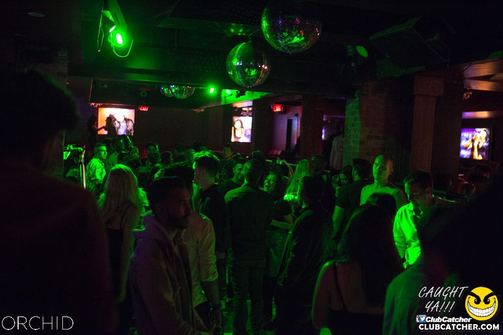 Orchid nightclub photo 39 - September 7th, 2019
