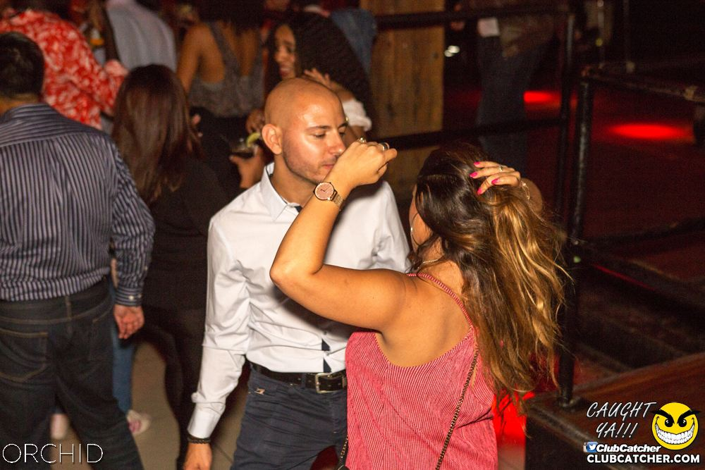 Orchid nightclub photo 41 - September 7th, 2019