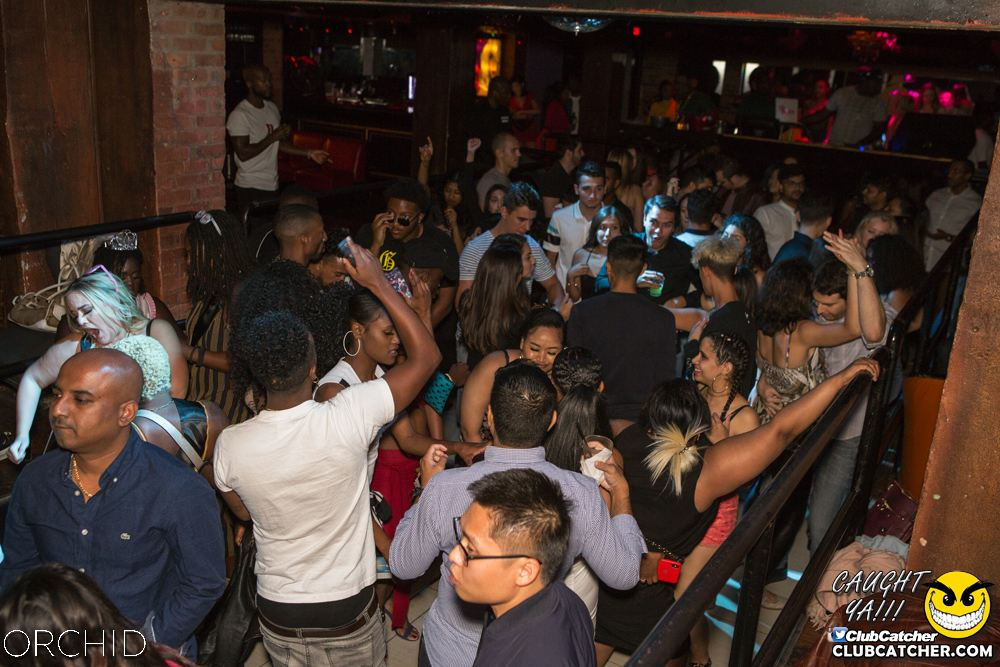 Orchid nightclub photo 53 - September 7th, 2019