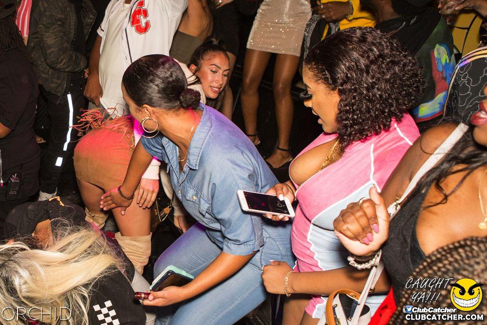 Orchid nightclub photo 58 - September 7th, 2019