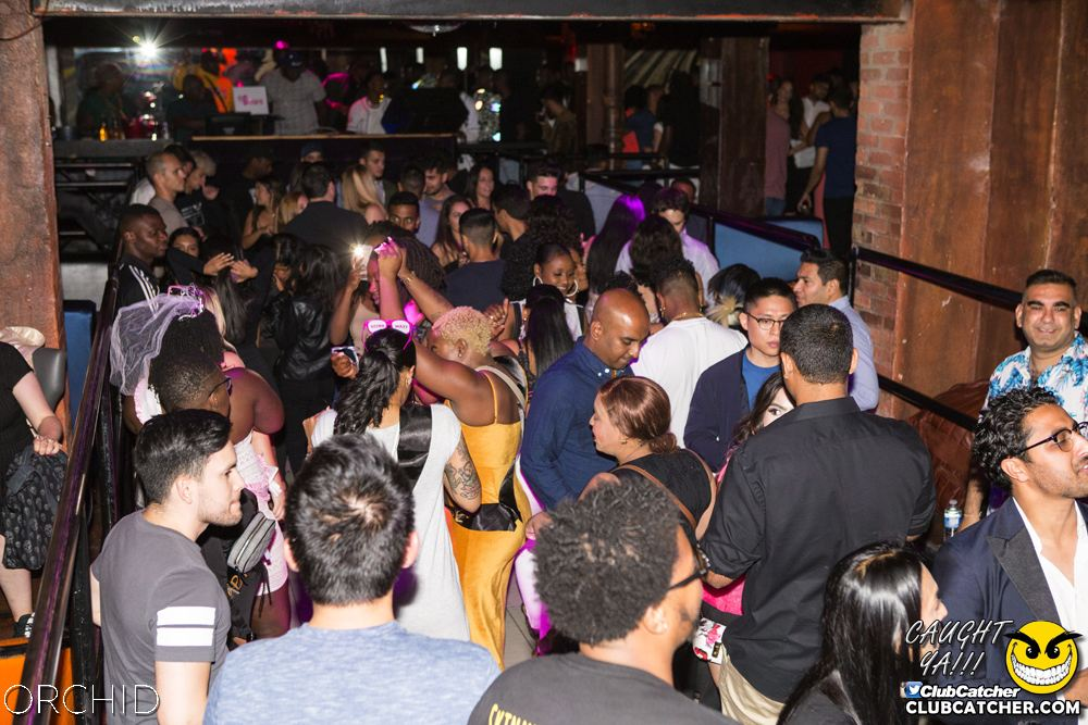 Orchid nightclub photo 61 - September 7th, 2019