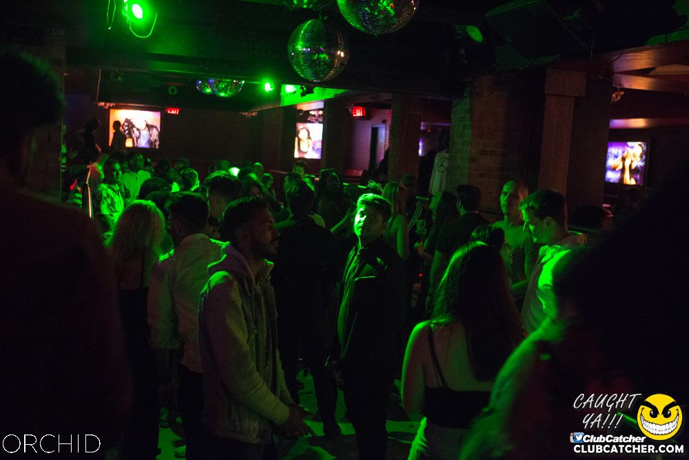 Orchid nightclub photo 80 - September 7th, 2019