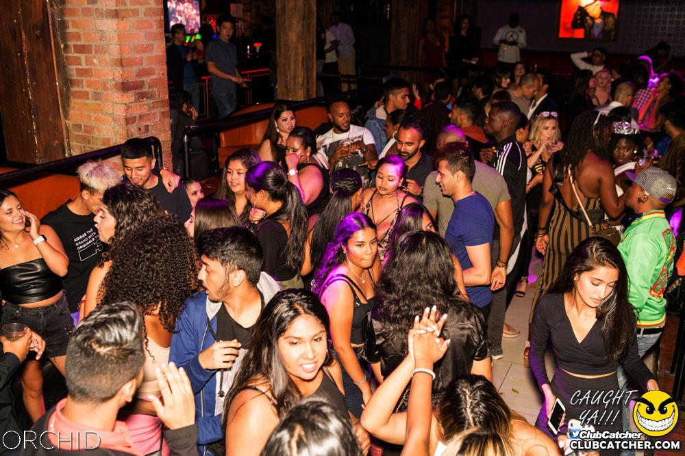 Orchid nightclub photo 87 - September 7th, 2019