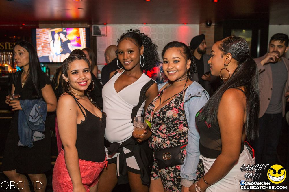Orchid nightclub photo 91 - September 7th, 2019