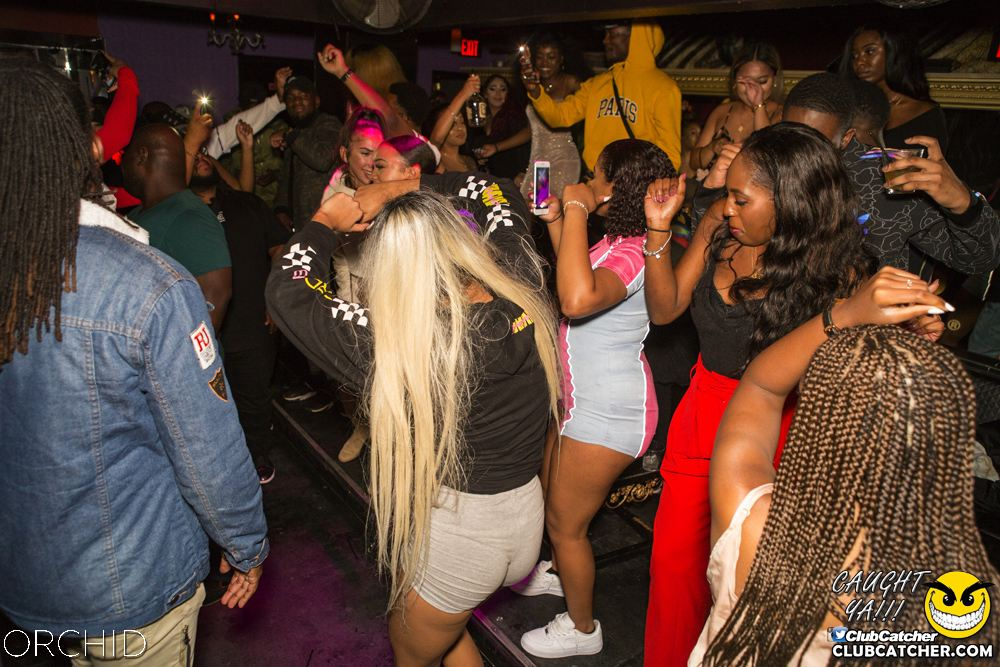Orchid nightclub photo 99 - September 7th, 2019