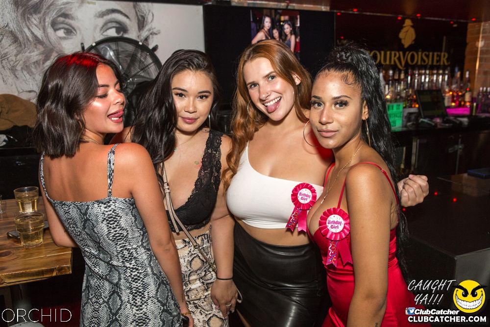 Orchid nightclub photo 2 - September 14th, 2019