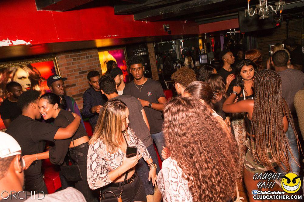 Orchid nightclub photo 19 - September 14th, 2019