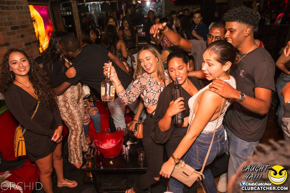 Orchid nightclub photo 21 - September 14th, 2019