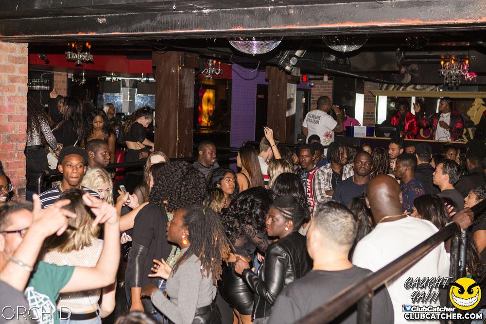 Orchid nightclub photo 28 - September 14th, 2019