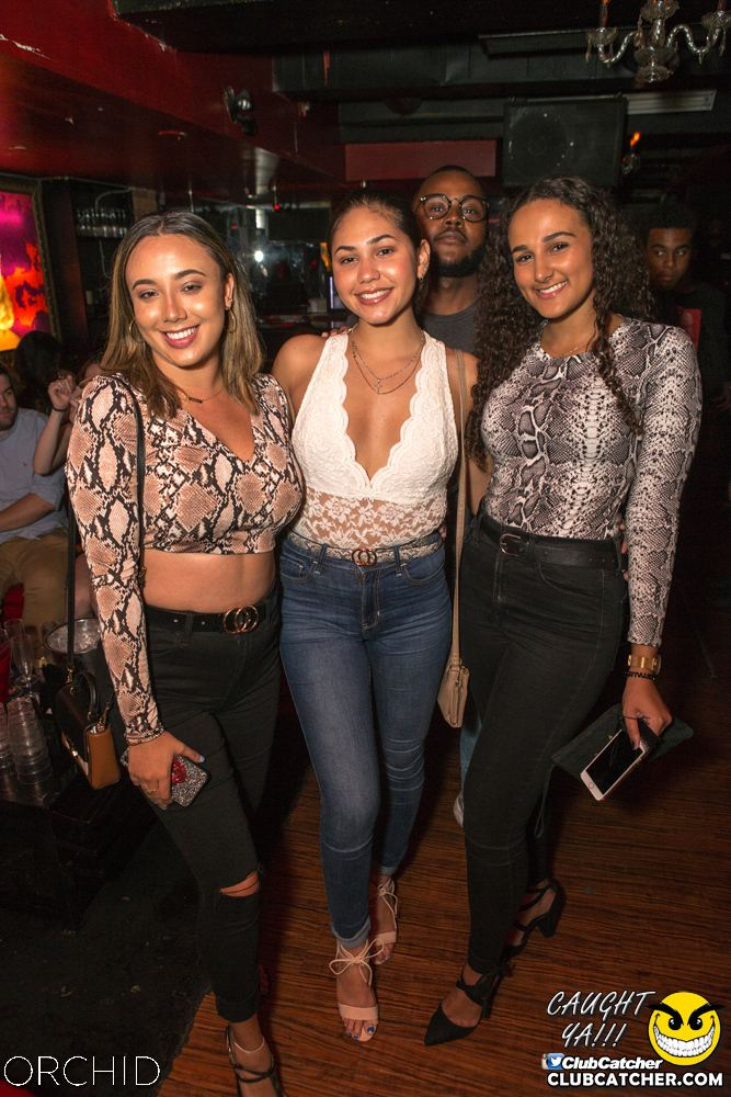 Orchid nightclub photo 40 - September 14th, 2019