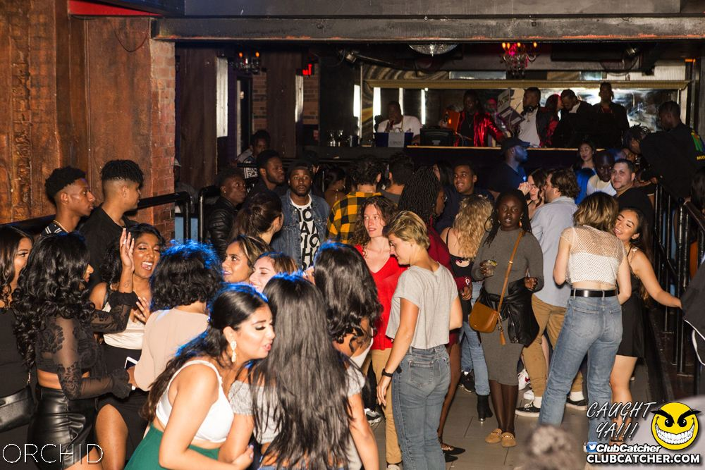 Orchid nightclub photo 41 - September 14th, 2019