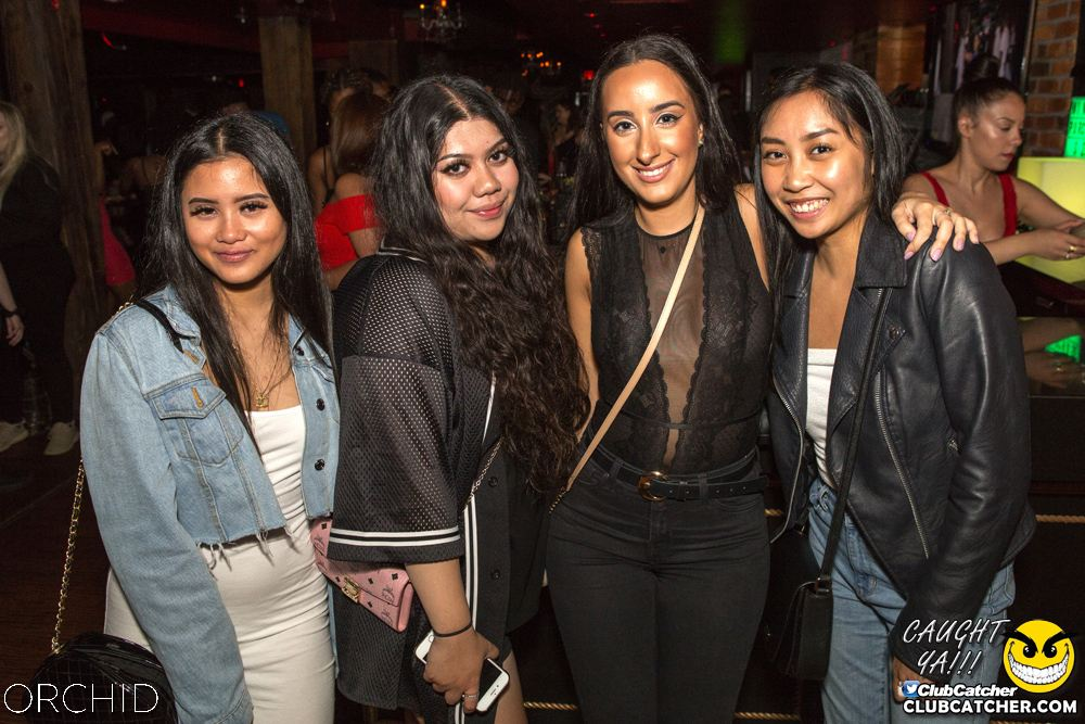 Orchid nightclub photo 47 - September 14th, 2019
