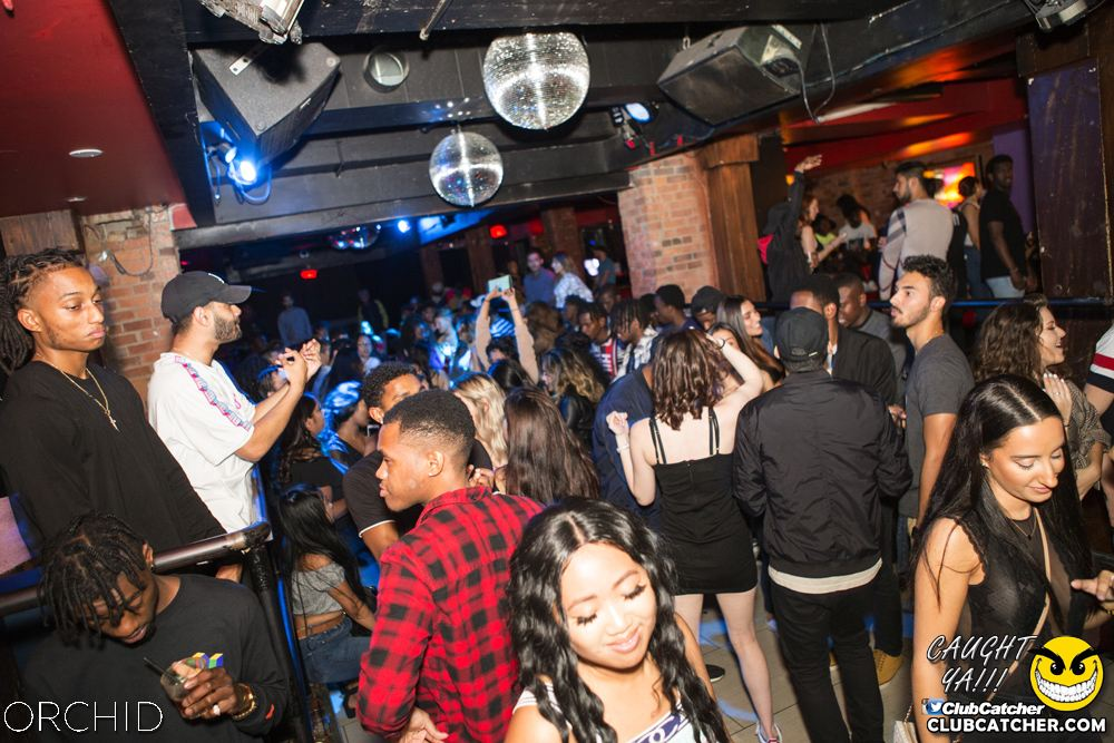 Orchid nightclub photo 55 - September 14th, 2019