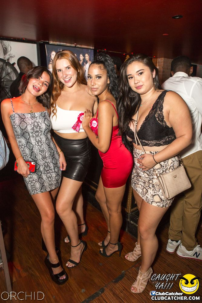 Orchid nightclub photo 60 - September 14th, 2019