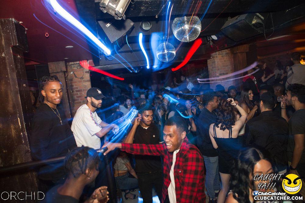 Orchid nightclub photo 63 - September 14th, 2019