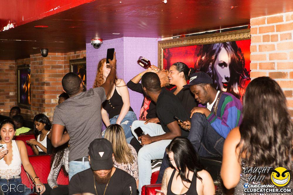 Orchid nightclub photo 71 - September 14th, 2019