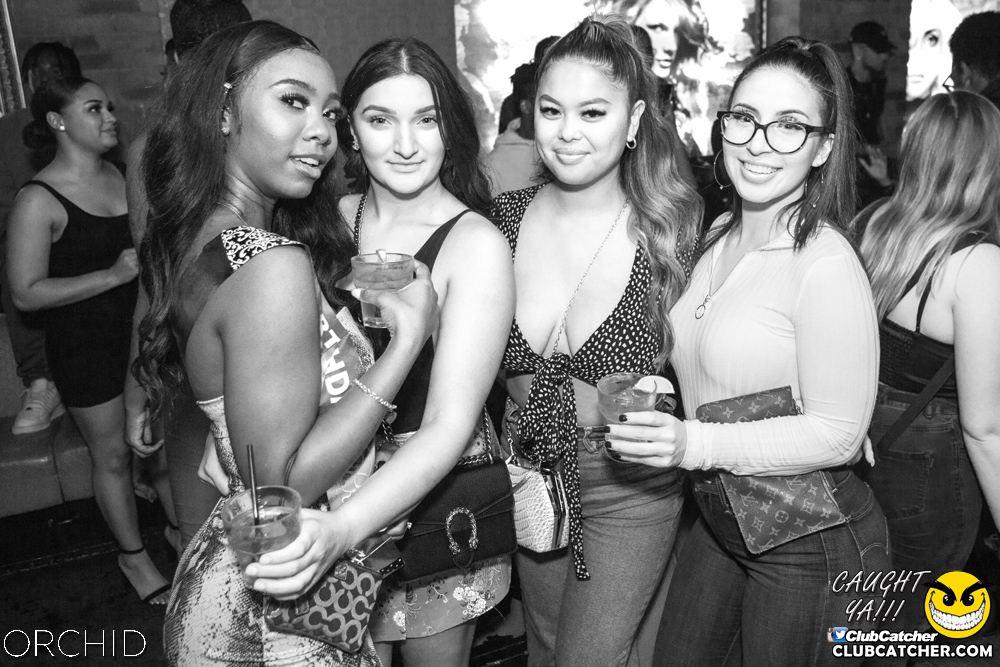 Orchid nightclub photo 74 - September 14th, 2019