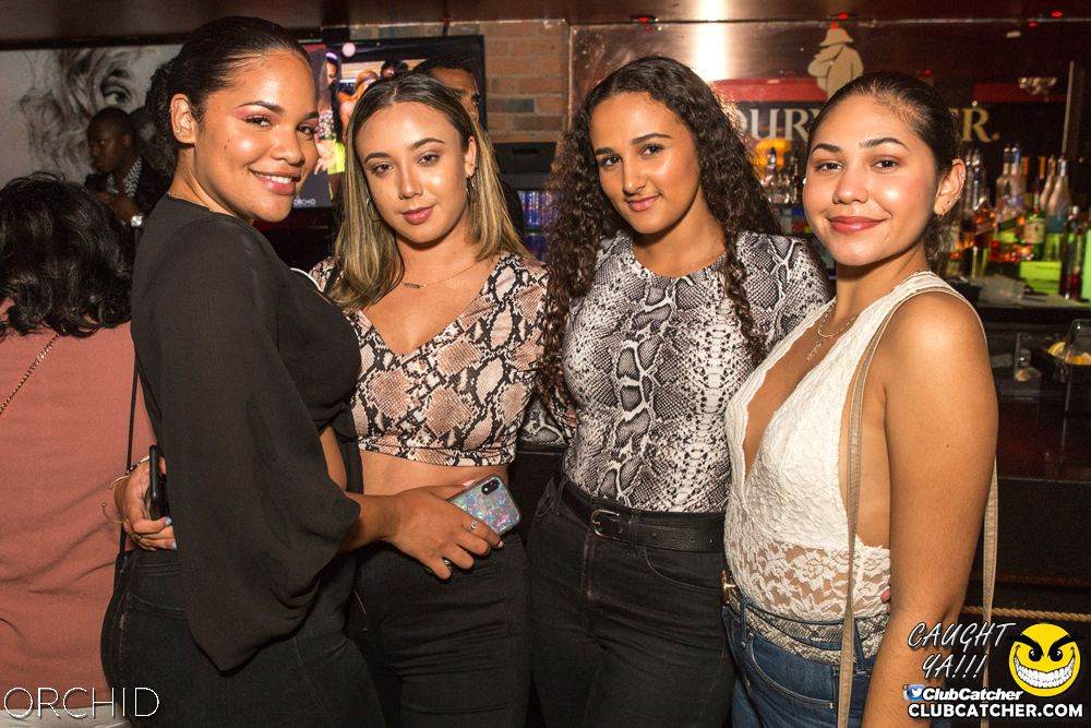 Orchid nightclub photo 75 - September 14th, 2019