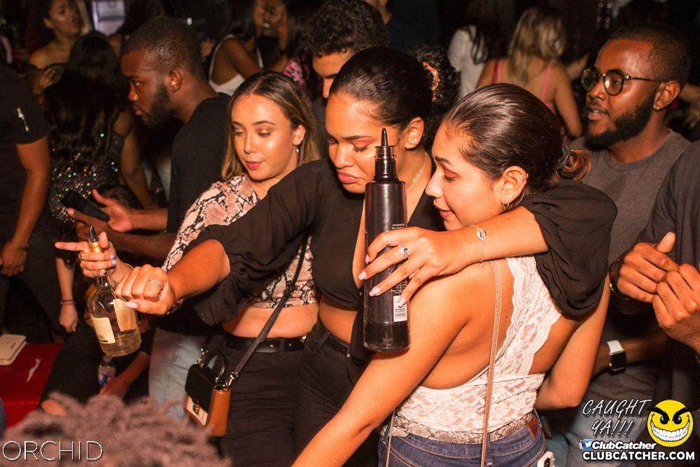 Orchid nightclub photo 81 - September 14th, 2019