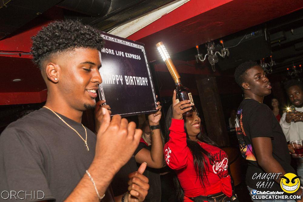 Orchid nightclub photo 91 - September 14th, 2019