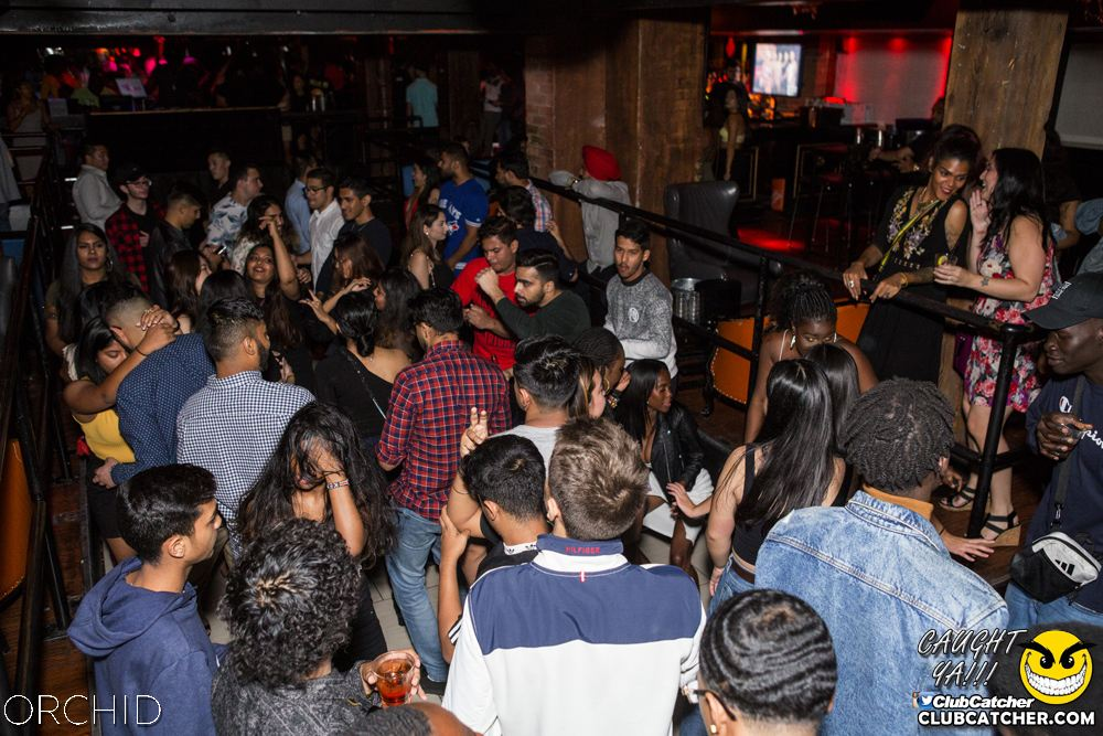 Orchid nightclub photo 24 - September 21st, 2019