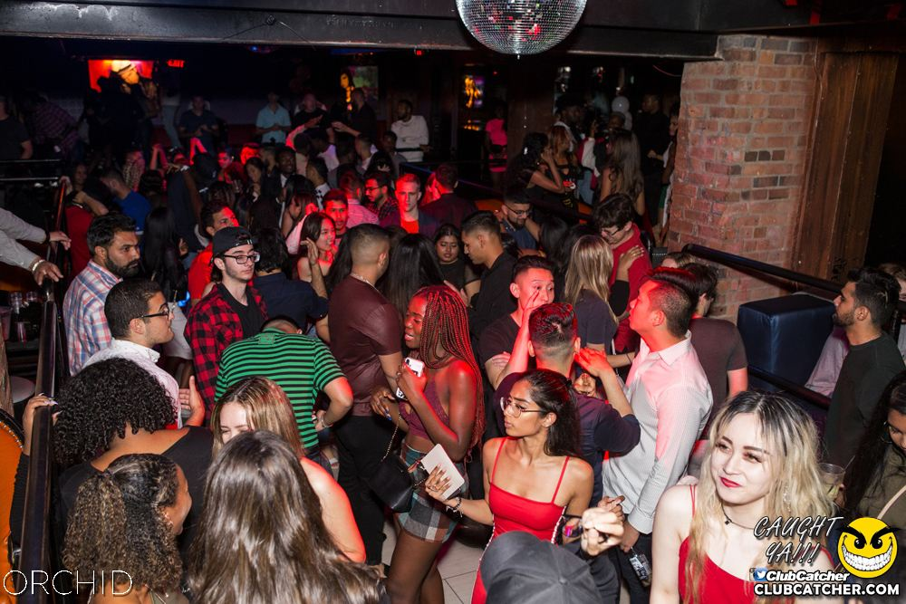 Orchid nightclub photo 33 - September 21st, 2019