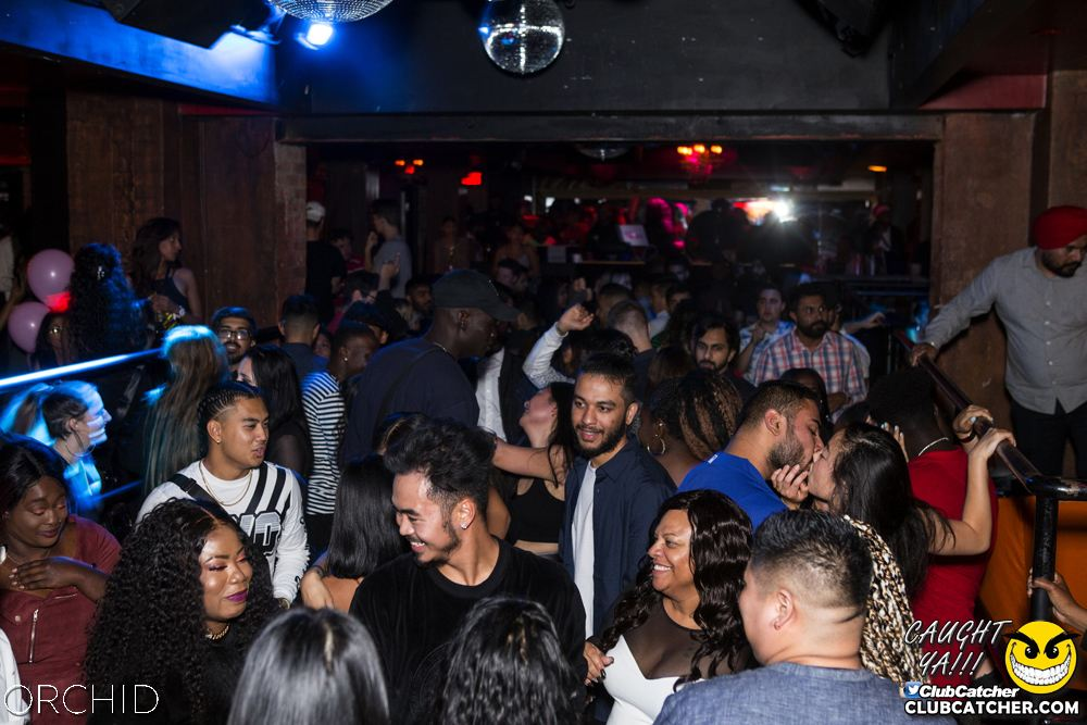 Orchid nightclub photo 58 - September 21st, 2019