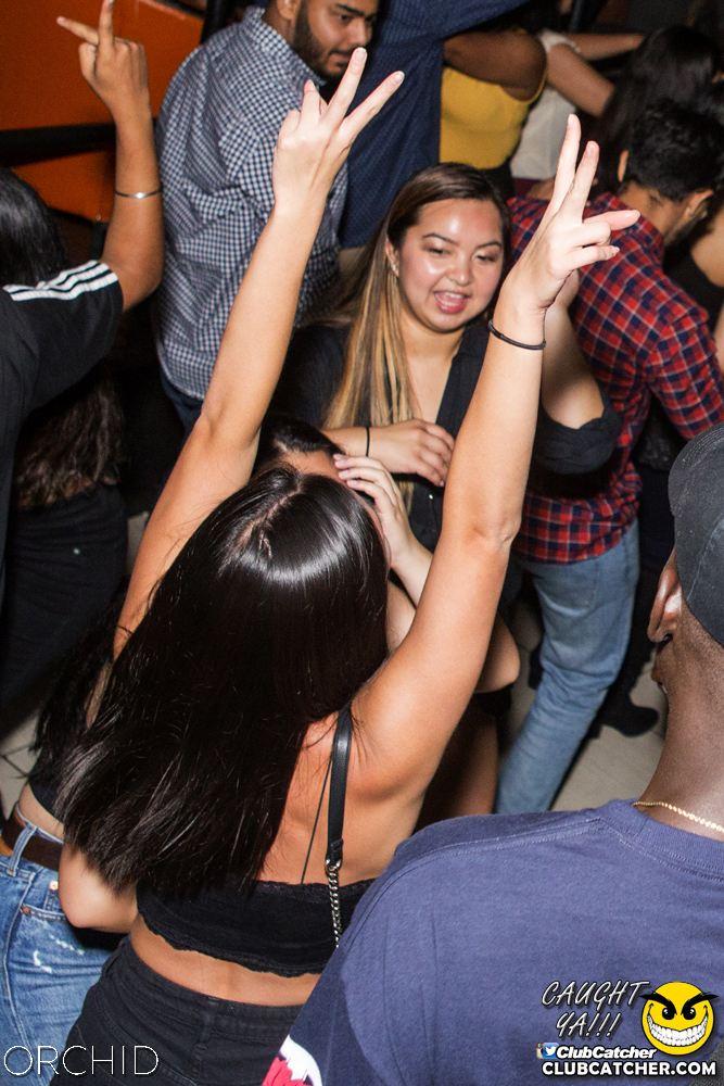 Orchid nightclub photo 61 - September 21st, 2019